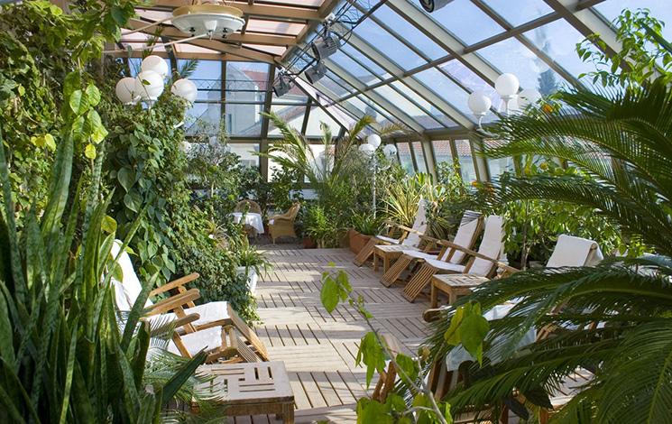зимние сады оранжереи