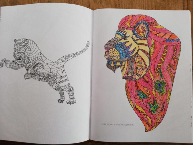 Malbuch für Erwachsene Fantastische Wesen