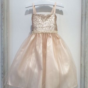 Champagne Sequined Bodice and Tulle Overlay Skirt Dress