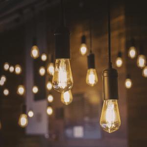 48ft Edison Lights