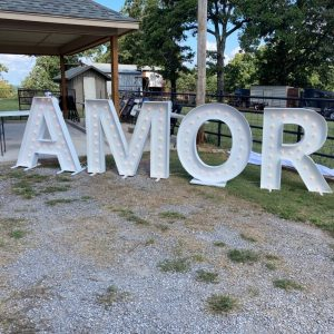 AMOR Marquee Letters