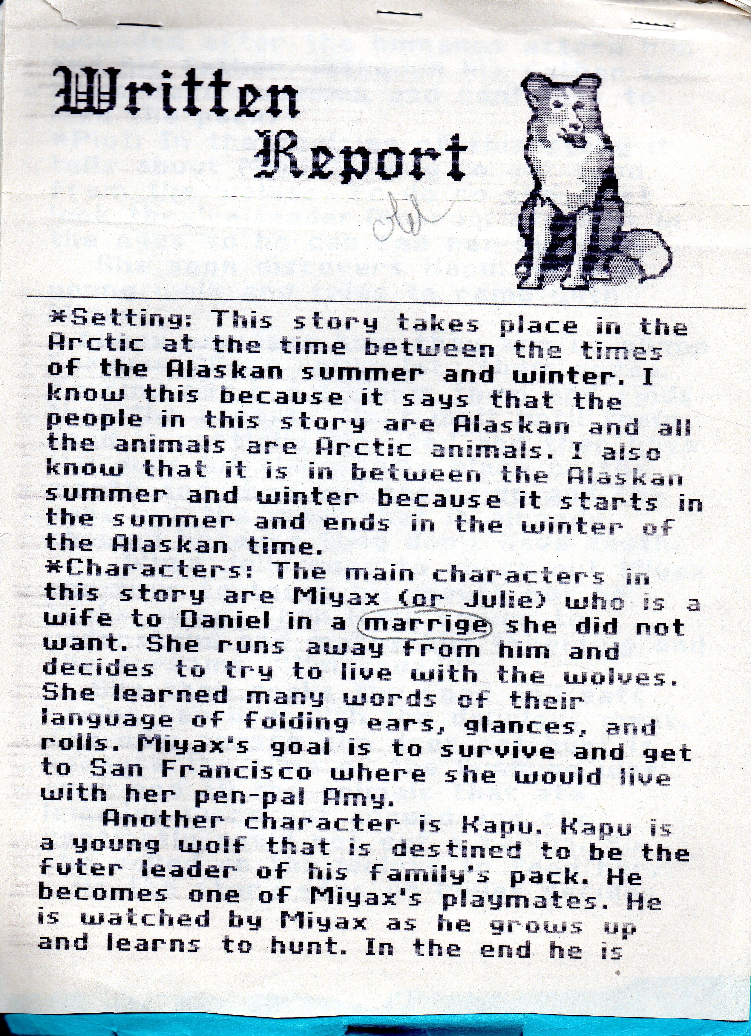 Sample Book Reports For 5th Grade Book Reports