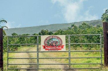 Langenstein Farms Gate