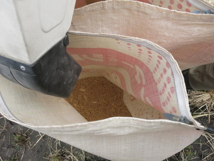 脱穀・籾すり