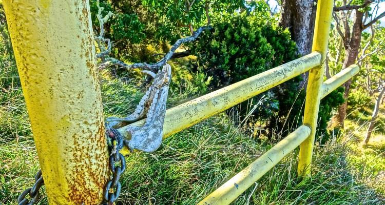 Hualalai / Kona / KonaNature.com / 1-844-566-2628