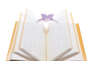 POP UP BOOKCOVER_2