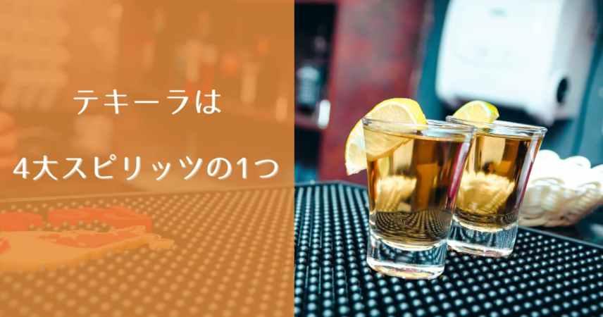 テキーラ(Tequila)の基礎知識について