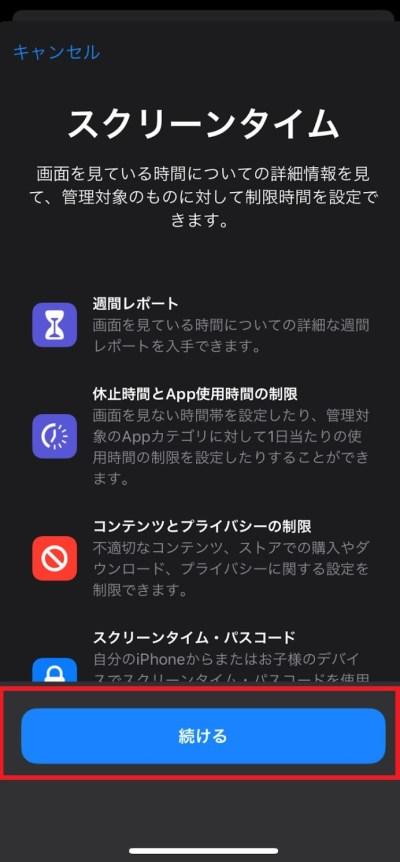 iphone_scam03