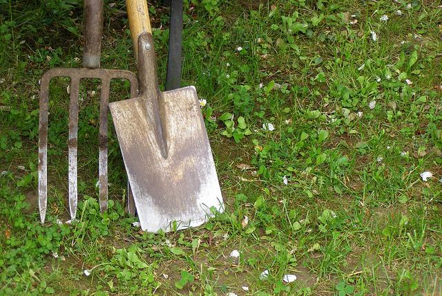 Sezon na konserwację narzędzi ogrodowych rozpoczęty Image