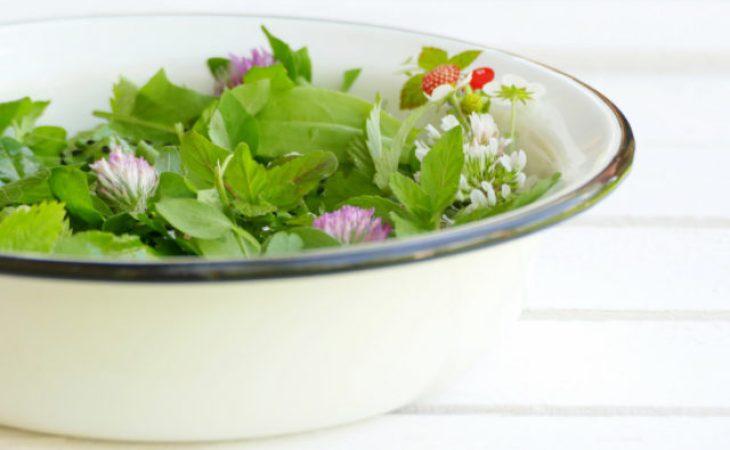 Sałatka zdzikich roślin jadalnych Image