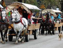 Paradny przejazd na 32. Małe Bajania w Bukowinie Tatrzańskiej