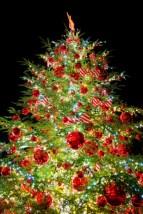 クリスマスツリーはなぜ飾る?もみの木はどうして?由来を解説するよ!