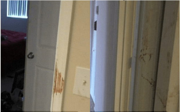 Blood splattered walls and doors in the home where Fidel Lopez killed his girlfriend Maria Nemeth