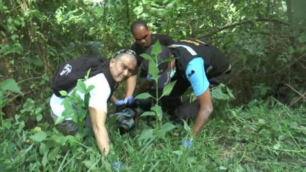 Pischa's body was discovered in the jungle with stab wounds 2.jpg