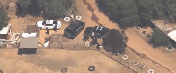 Deputies hunt Marijuana shooter 3