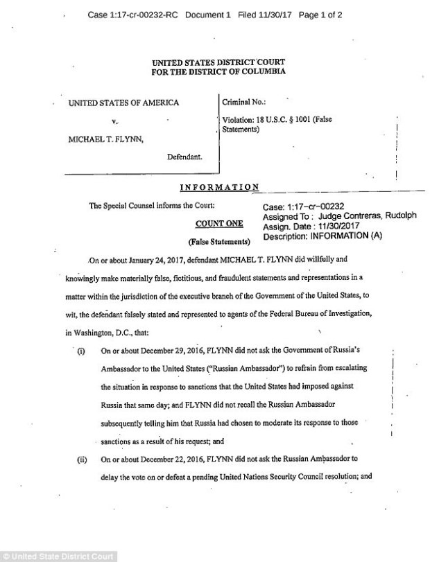 Mike Flynn indictment 1.jpg