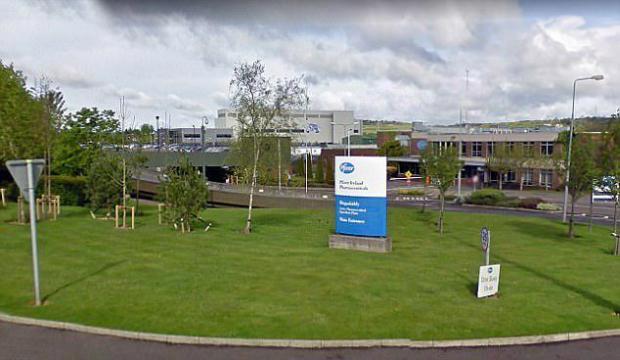 Pfizer factory inCounty Cork, Ireland.jpg