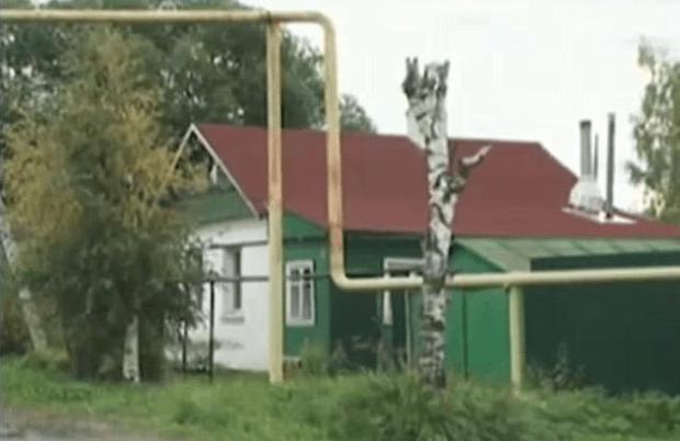 Viktoria Kuznetsova's home.png