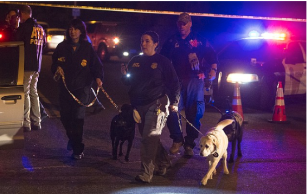 Agents with bomb sniffing dogs inspect the site of the 4th bombing in Austin, TX Mar 18 1