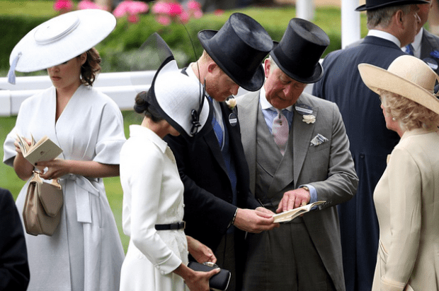More royal tips for the Duchess of Sussex: Prince Harry and Charles intently study the program joined by Meghan and Camilla at Ascot today .png