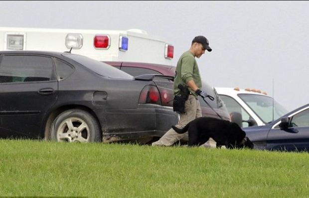 K-9 Units search the farm where Cristhian Rivera has been living 1.JPG