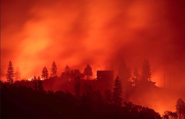 California wild fire 1