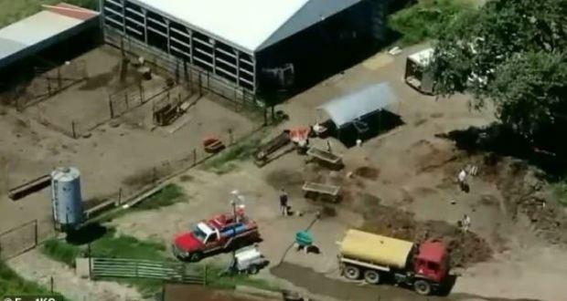 Garland Nelson's pig farm in Braymer, Missouri 4.JPG