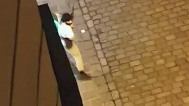 This image has an empty alt attribute; its file name is man-carrying-an-assault-rifle-and-believed-to-be-the-gunman-who-carried-out-the-rampage-in-Vienna-Austria-Nov-2-1.jpg