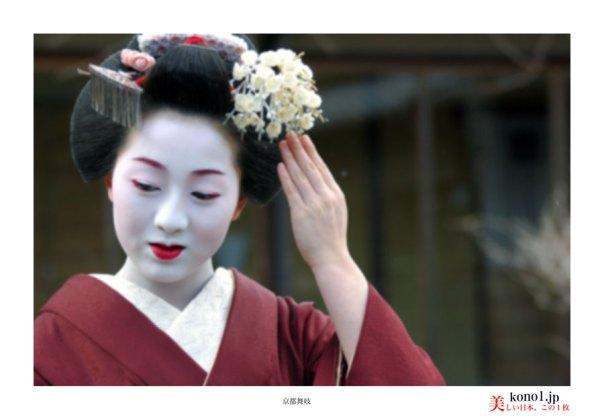 京都舞妓03