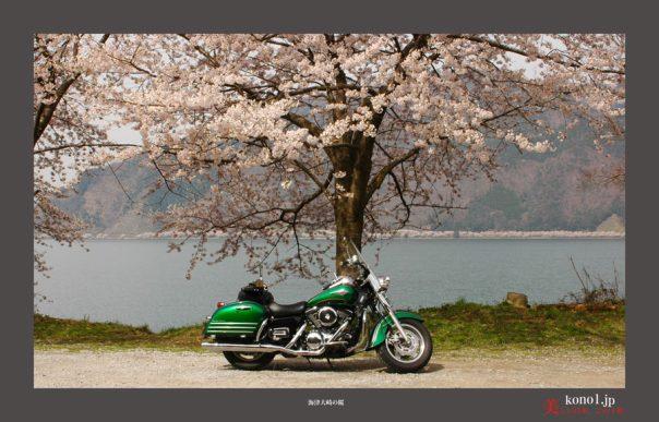 海津大崎01