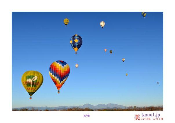 熱気球とちぎ大会03