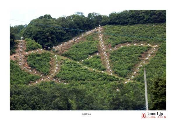 五山送り火 左京区松ヶ崎西山「妙」の送り火当日 護摩木が積み上げられています