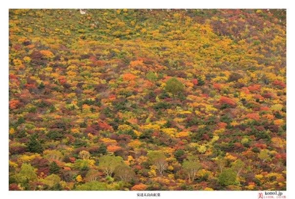 ブログ 安達太良山 紅葉 黄葉 福島県 二本松市