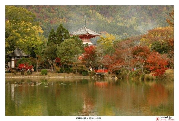 ブログ 京都 嵯峨野 紅葉 大覚寺と大沢池