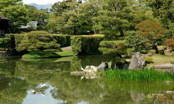 ブログ 桂離宮 庭園