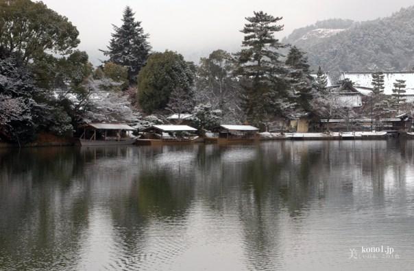京都 大覚寺 大沢池 雪