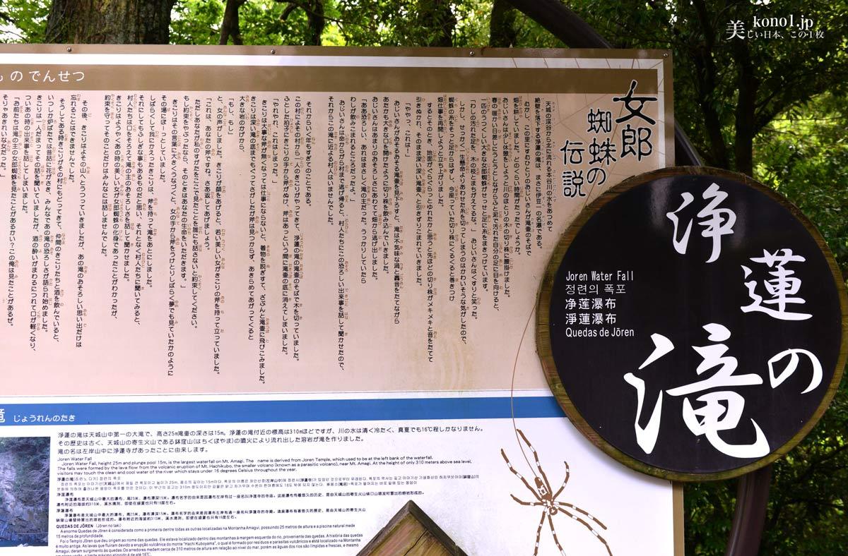 静岡県伊豆市 伊豆の名瀑「浄蓮の滝」は過酷な天城越えの地に ...