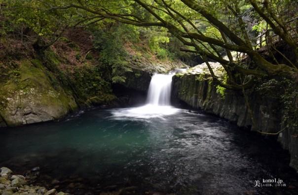 静岡県河津町 河津七滝 伊豆ジオパーク 蛇滝