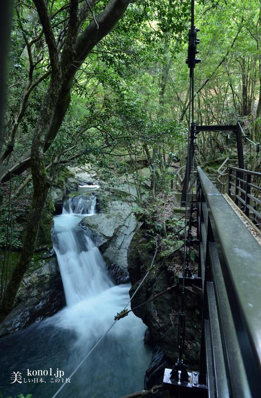 静岡県河津町 河津七滝 伊豆ジオパーク エビ滝