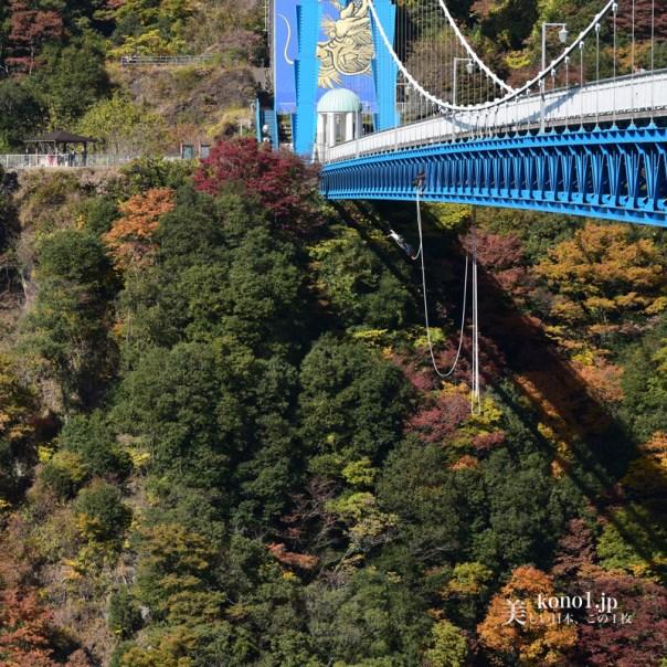 茨城県常陸太田市 竜神渓谷の紅葉 日本一の高さ バンジージャンプ 紅葉