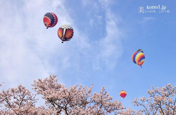 2016 渡良瀬バルーンレース 本田グランプリ 熱気球 桜 馬像