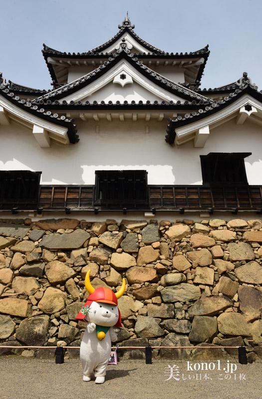 彦根城 桜 滋賀県 天守閣 ひこにゃん 金亀城(こんきじょう) 国宝五城