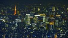 壁紙 東京の夜景 東京タワー 丸の内 東京スカイツリーからの夜景