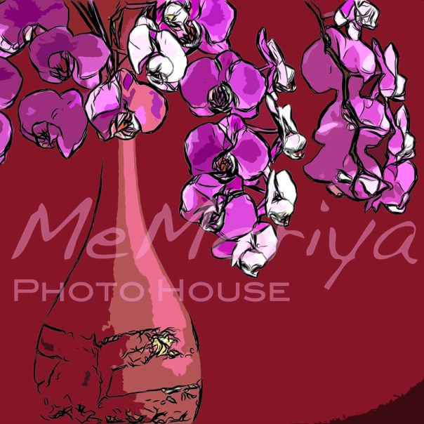 Takataro個展 胡蝶蘭 赤い花瓶 絵画 アート