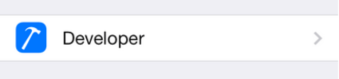 iphone settings developer menu