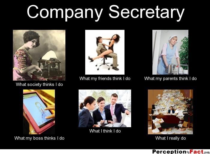 frabz-Company-Secretary-What-society-thinks-I-do-What-my-friends-think-e88b57