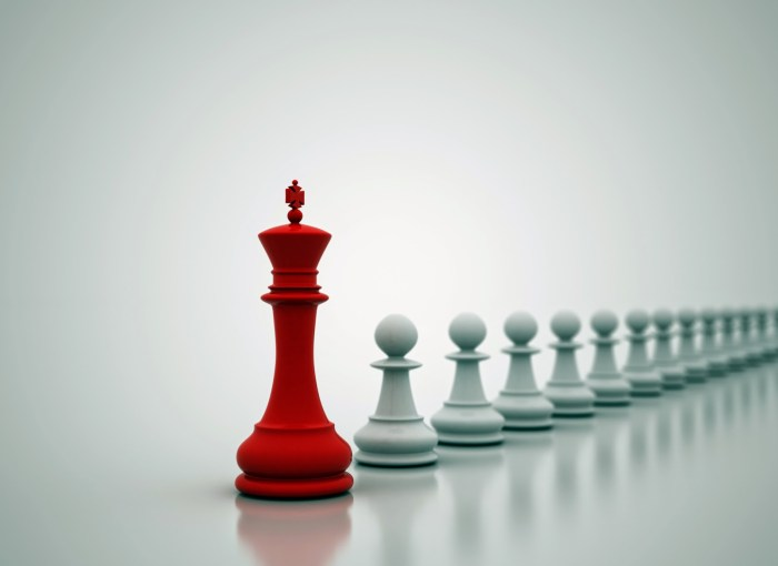 chess-pieces_leadership
