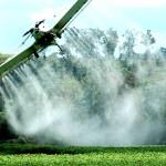 «Hoy se aplica cuatro veces más fungicida que en 2010, tres veces más herbicida y hasta nueve veces más insecticida»