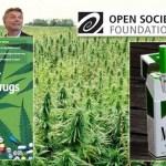 La colonización que viene: la industria del cannabis. Por Nicolás Paz