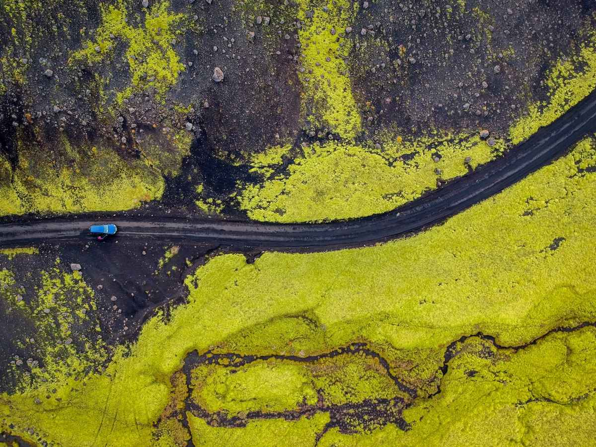 aerial photography of blue vehicle at road